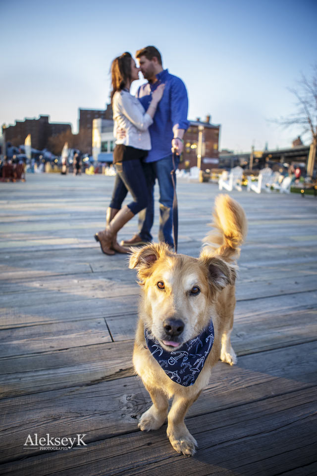 engagement photos with a pet canal side buffalo ny
