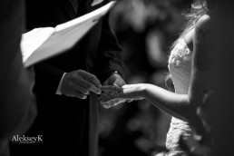 wedding photography timberlodge akron ny